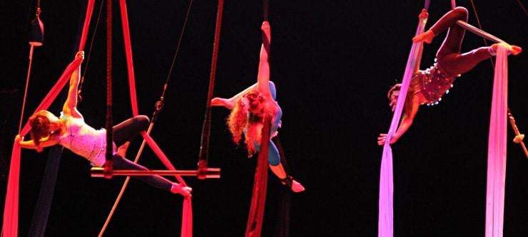 Campus Polo Circo