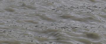 Agua no contaminada del Río de la Plata